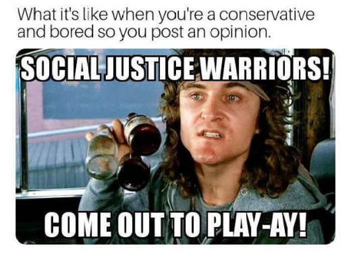 when conservative bored post opinion social justice warriors come out to play ay
