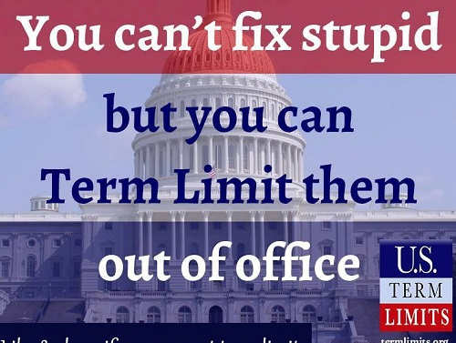 you cant fix stupid but you can term limit them out of office