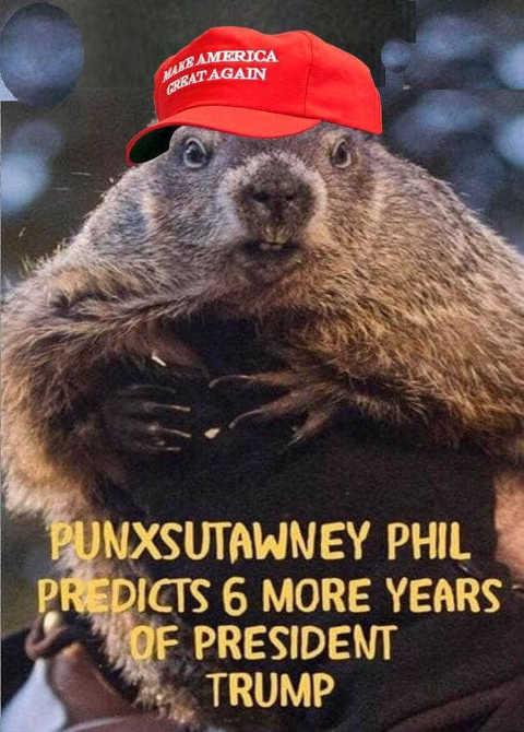 punxsutawney phil predicts 6 more years of president trump maga hat groundhog