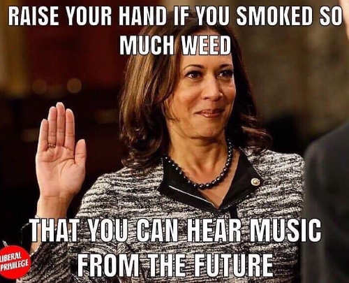 raise your hand if you smoked so much week you hear music from the future