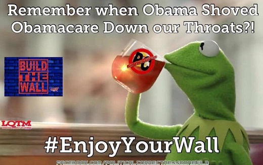 remember when obama shoved obamacare down our throats enjoy your wall