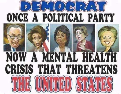 democrat once a political party now mental hillary waters schumer pelosi waren