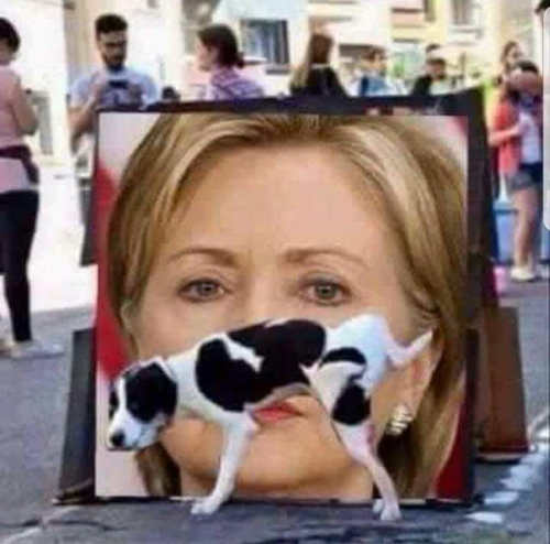 dog peeing on hillary sign