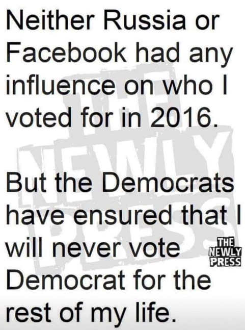neither russia nor facebook affected my vote but democrats ensured never vote for them rest of life