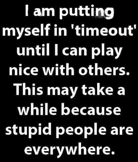 im putting myself in time out until can play nice with others may be a while stupid people everywhere