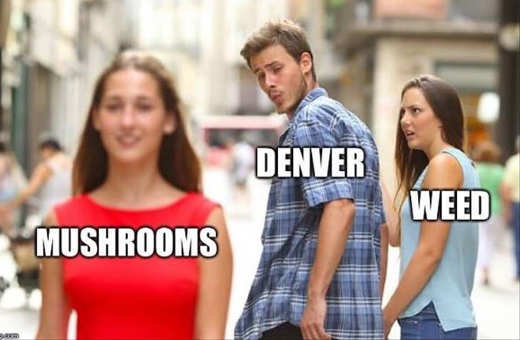 mushrooms denver weed checking out