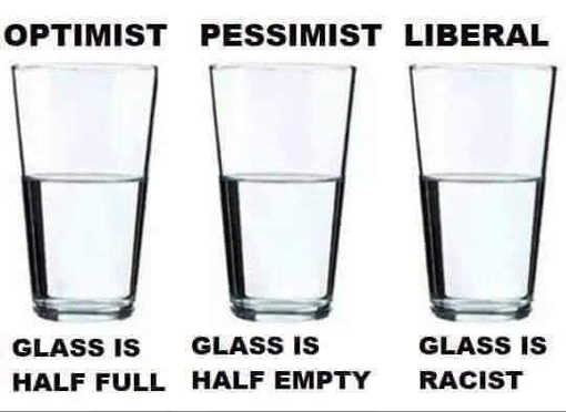 optimist glass half full pessimist half empty liberal racist