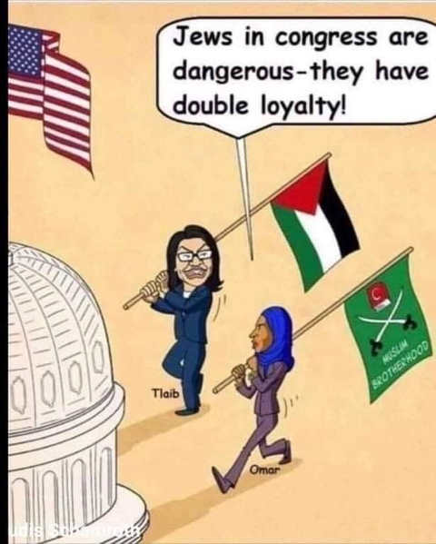 tlaib omar jews in congress have double loyalty carrying muslim terrorist flags