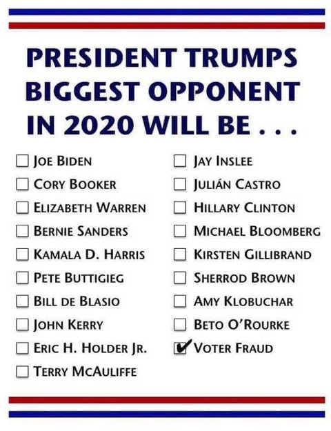 trumps-biggest-2020-opponent-voter-fraud-checkbox-ballot