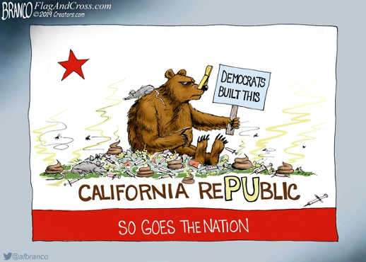 califonia democrats built this