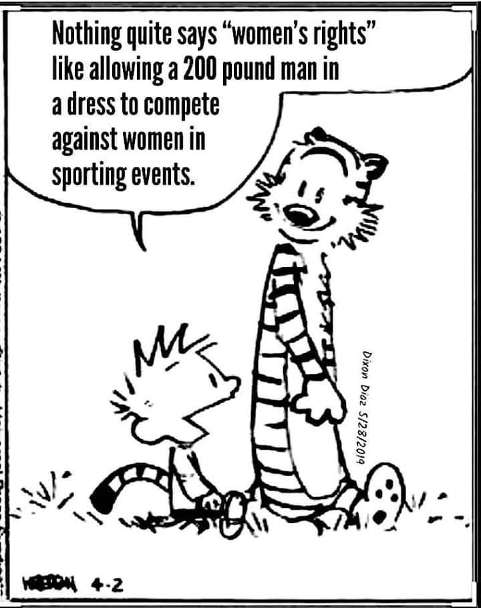 calvin hobbes nothing says womens rights like letting 200 lb man compete in woman event