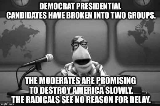 democrat presidential candidates in 2 groups moderates slowing destroying america those who dont want to delay