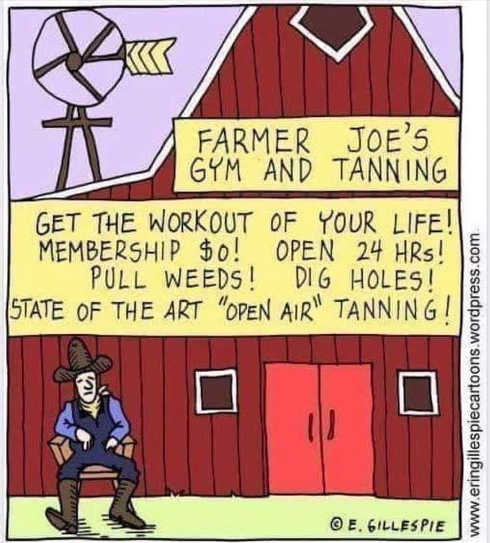 farmer joes gym and tanning get workout of your life open 24 hours state of the art open air tanning