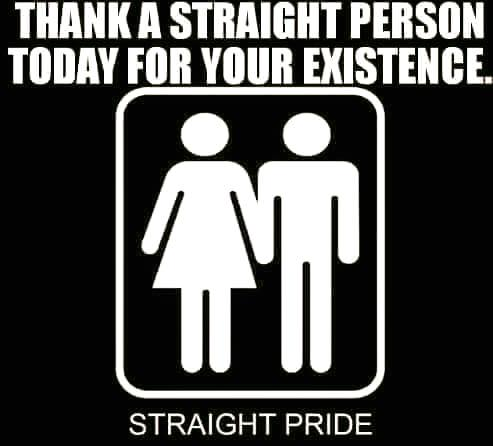 straight pride thank a straight person today for your existence