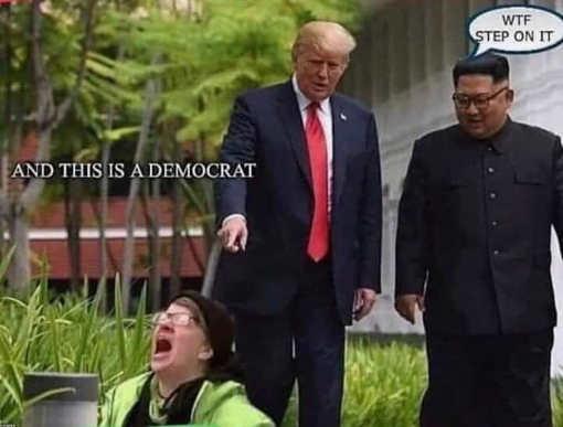 kim wtf is that demcrat trump step on it