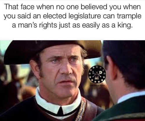 mel gibson face you make when someone says elected officials cant trample rights like king