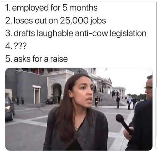 ocasio cortez employed 5 months loses 25000 jobs drafts anti-cow legislation asks for raise