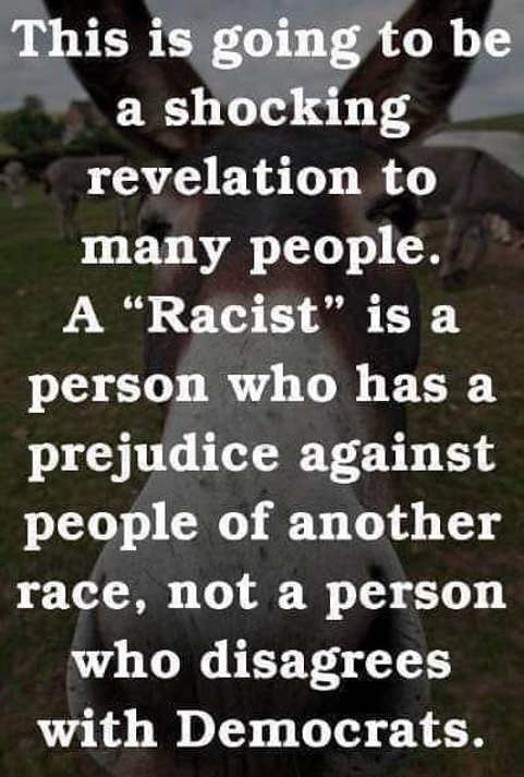 racist is person dicriminates based on color not someone who disagrees with democrats