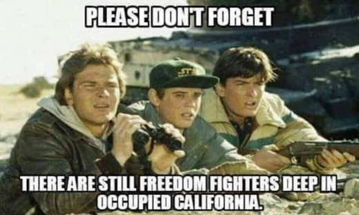 red dawn please dont forget there are still freedom fighters deep in occupied california