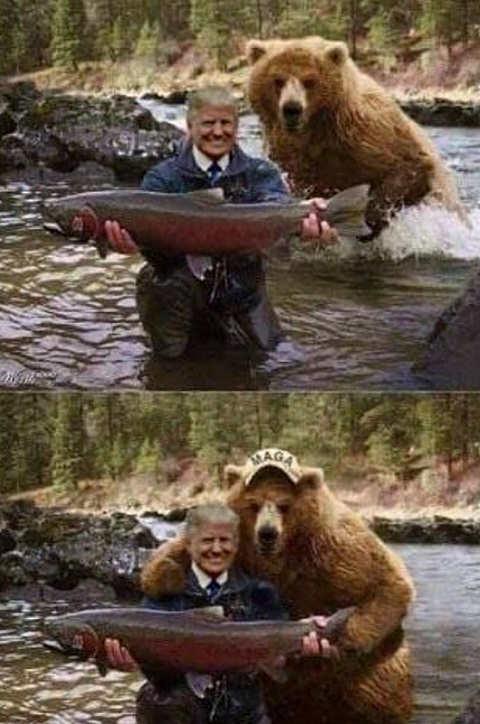 trump fish bear maga hat