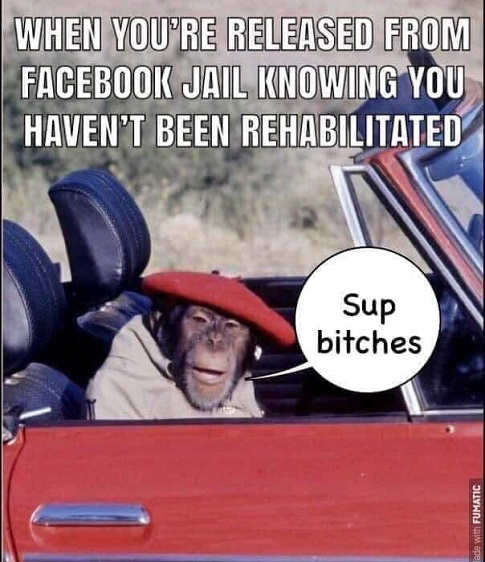 when you get released from facebook jail but havent been rehabilitated