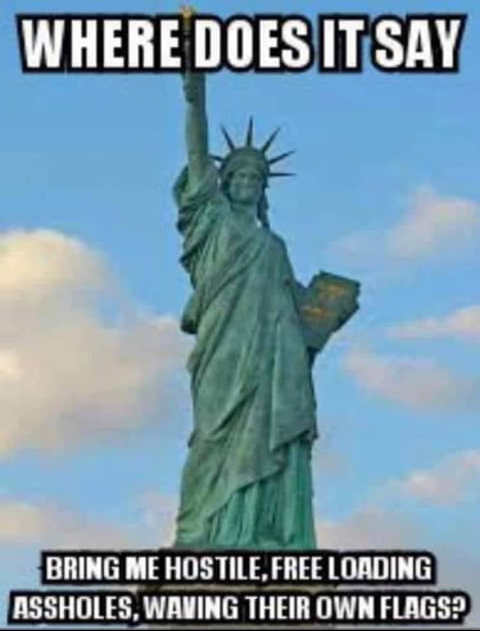 where does it say statue liberty give me hostrile free loading waving own flags