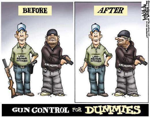 gun control for dummies before after law abiding citizen criminal