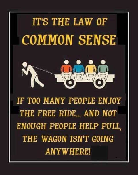 law of common sense too many people enjoy free ride not enough people to pull