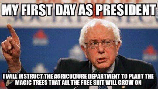 bernie sanders my first day as president will instruct agriculture to plant magic trees free shit will grow on