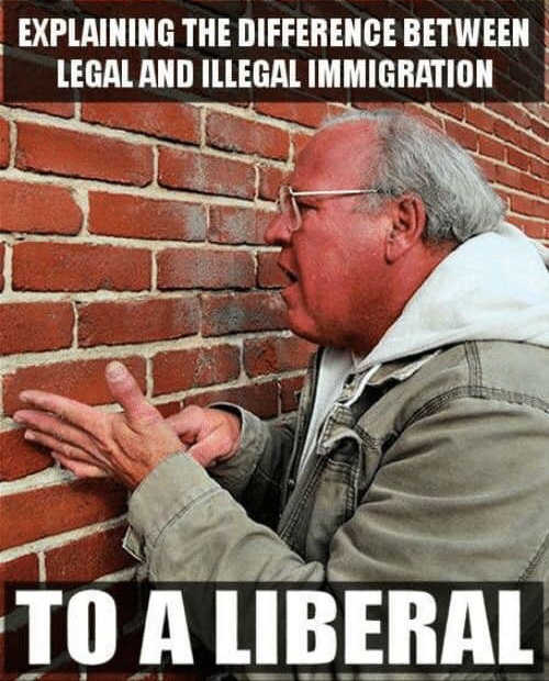 explaining difference between legal illegal immigration to liberal brick wall