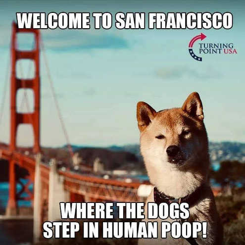welcome to san francisco where dogs step in human poop