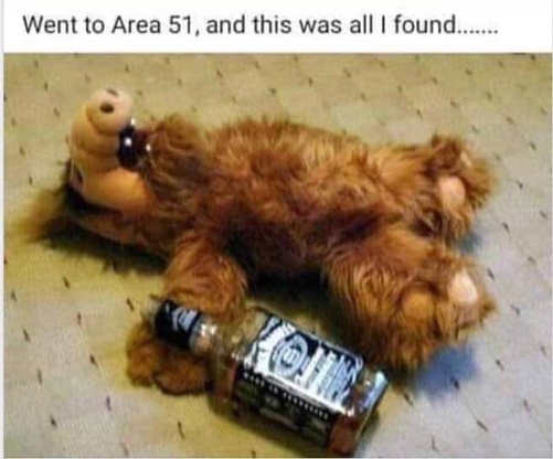 went to area 51 only found alf passed out whiskey