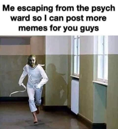me escaping from psych ward so i can post more memes for you guys