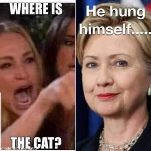 cameron diaz angry lady cat hillary clinton he hung himself