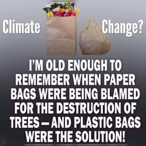 climate change old enough to remember paper bags were blamed plastic was the solution