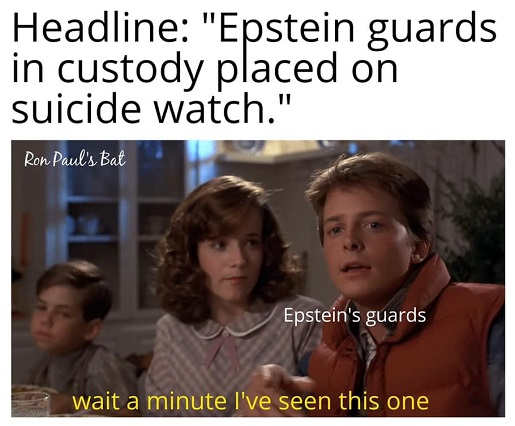 headline epstein guards in custody placed on suicide watch wait ive seen this one back to future