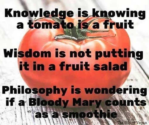knowledge is knowing tomate is fruit bloody mary is smoothie