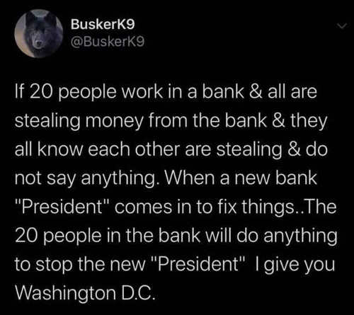 tweet if 20 people all stealing from same bank new president destroy i give you dc
