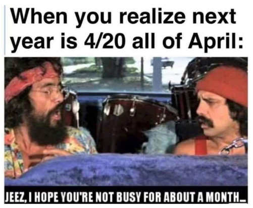 when you realize next april is 420 all of april next year cheech chong