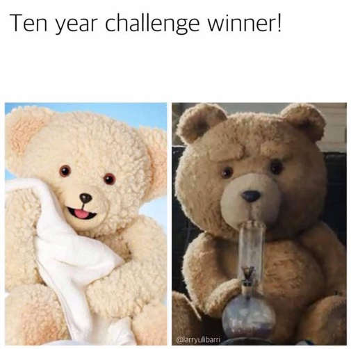 10 year challenge winner snuggle ted teddy bear
