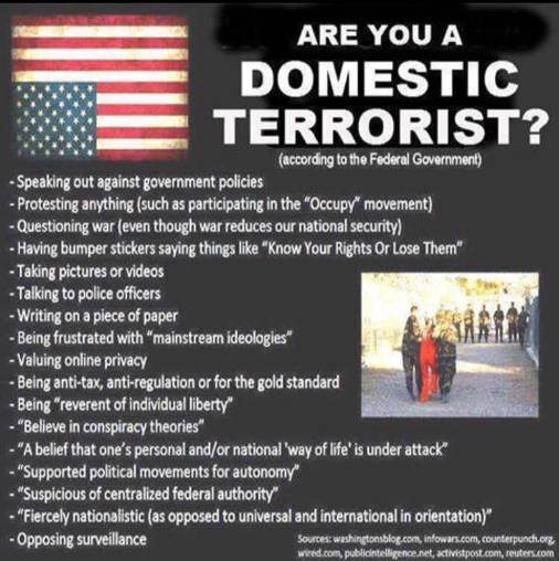 are you a domestic terrorist according to the government