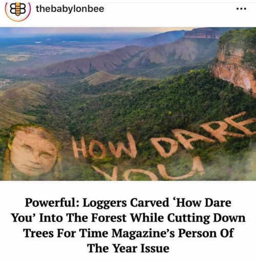 babylon bee loggers carve how dare you for time person of year