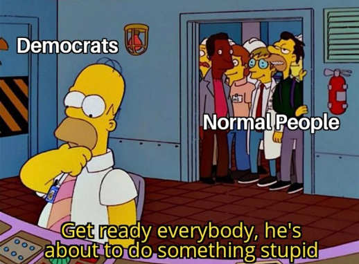 democrats normal people get ready everybody do something stupid homer simpson