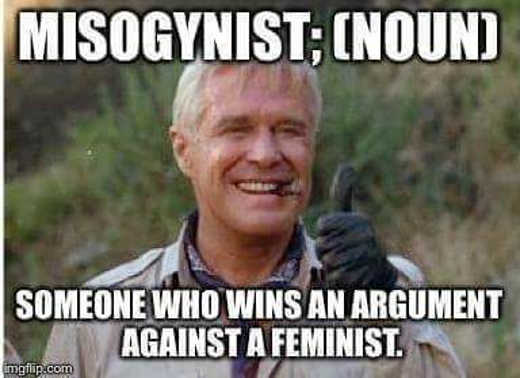 misogynist noun someone who wins an argument against a feminist