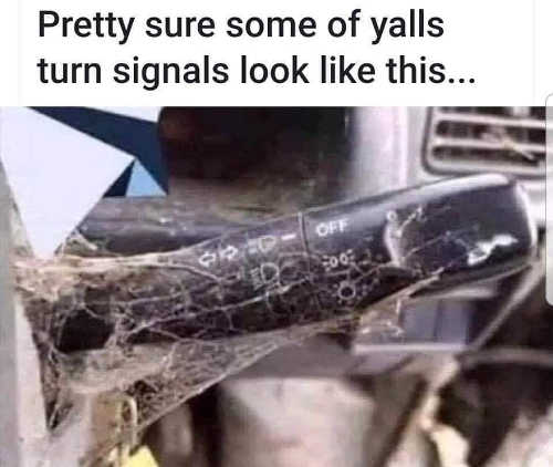 pretty sure this is what some turn signals look like spiderwebs