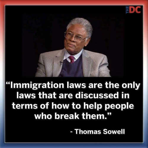 quote thomas sowell immigration laws only discussed in terms of how to break them