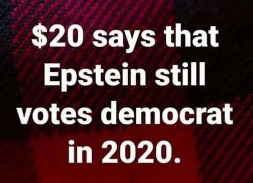 20 dollars epstein still votes democrat in 2020