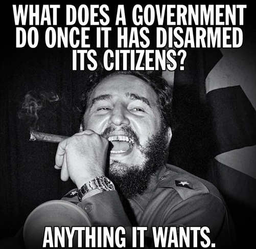 castro what does a government do once its disarmed its citizens anything it wants