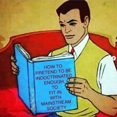 book how to pretend to be indoctrinated enough to fit in with mainstream society