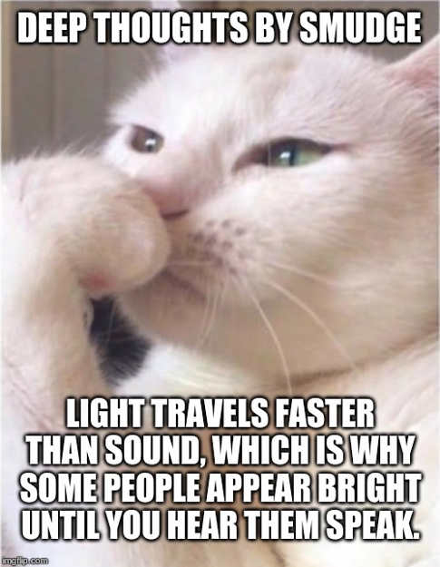 deep-thoughts-smudge-angry-lady-light-travels-faster-than-sound-people-appear-bright-until-you-hear-them-speak.jpg